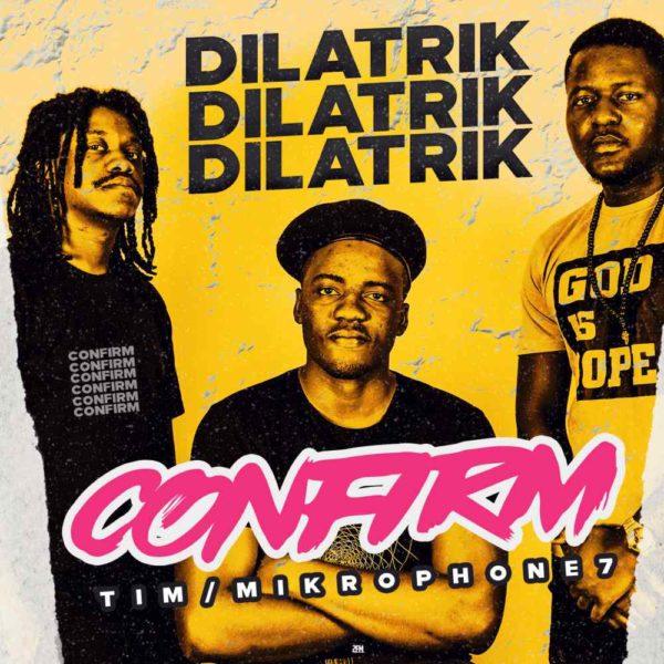 dilatrik-confirm-cover