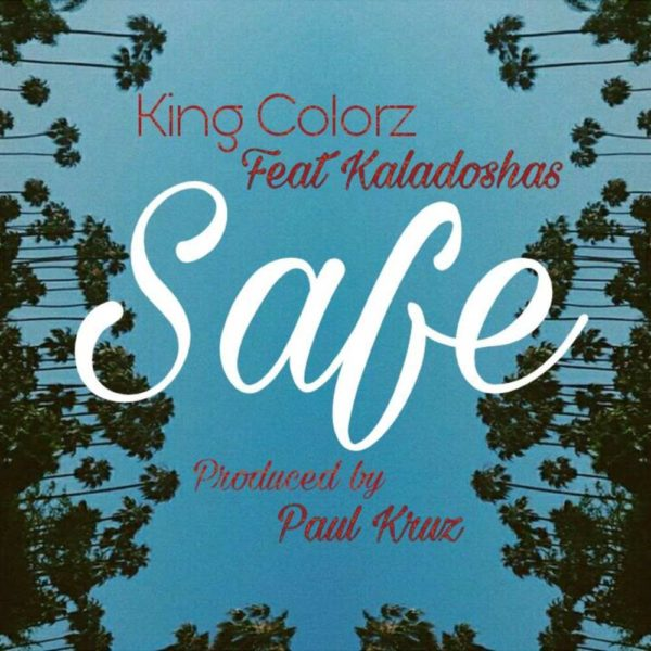 king-colorz-safe-cover