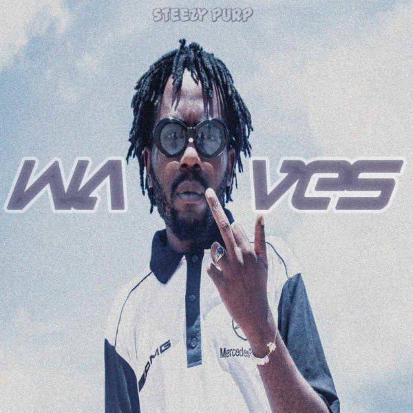 steezy-purp-waves-cover