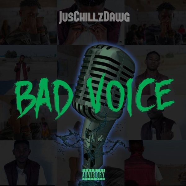 juschillzdawg-bad-voice-cover
