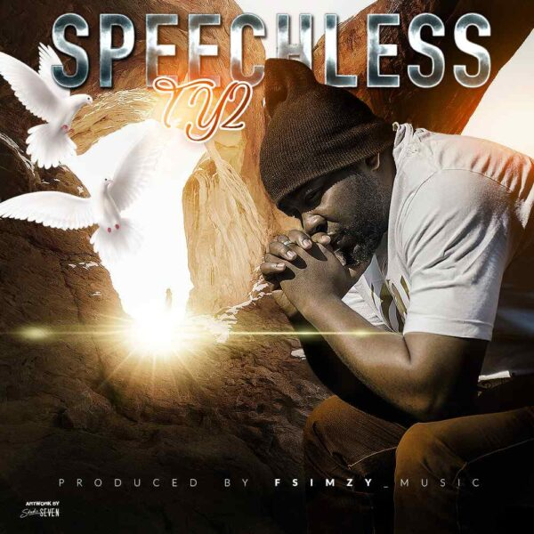 ty2-speechless-cover