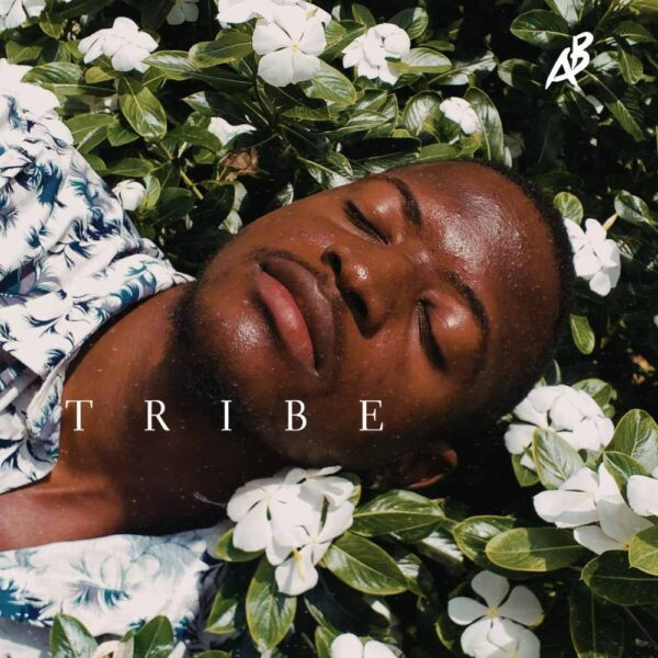 a-b-tribe-cover
