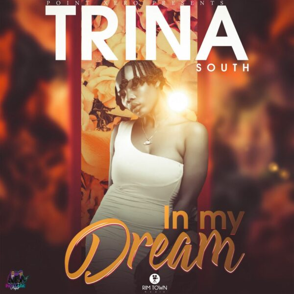 trina-south-in-my-dreams-cover