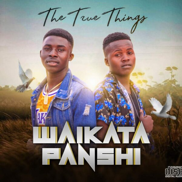 true-things-devil-waikata-panshi-cover