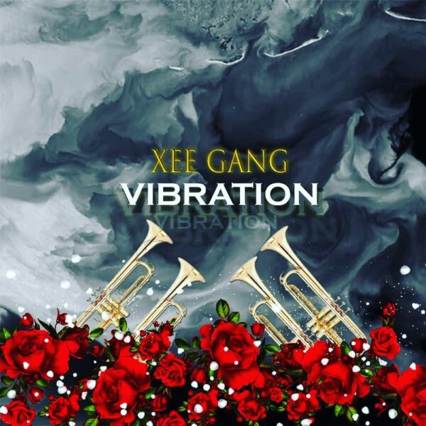 xee-gang-vibration-cover