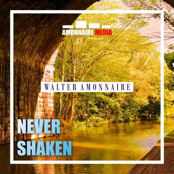 walter-amonnaire-never-shaken-cover