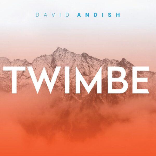 david-andish-twiimbe-cover