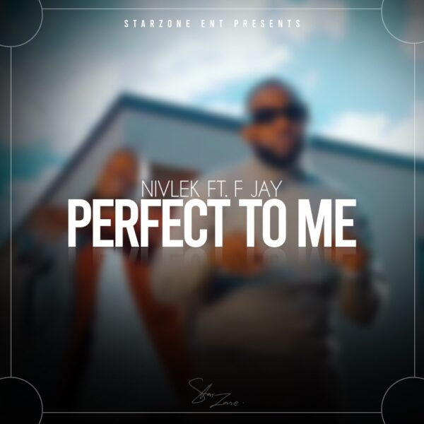 nivlek-perfect-to-me-ft-f-jay-cover